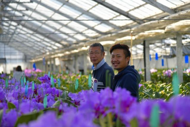 千葉県館山市の「早かわ洋蘭」栽培の模様
