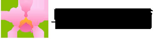 胡蝶蘭・大輪カトレアギフトの直売所|千葉県館山の早かわ洋蘭(洋蘭生産農家)